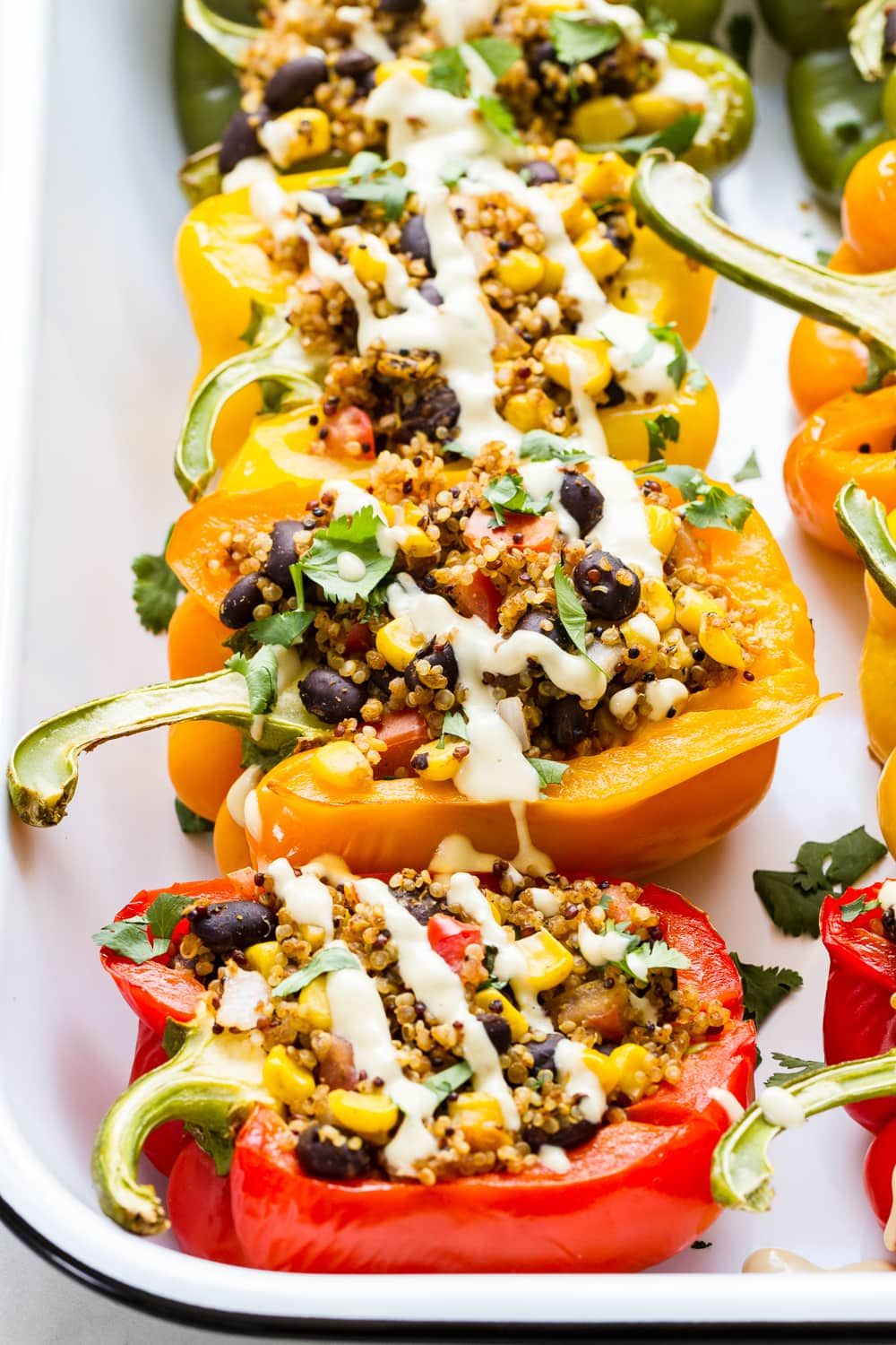side angle view of quinoa stuffed colored bell peppers on a serving dish topped with vegan cashew cheese sauce.