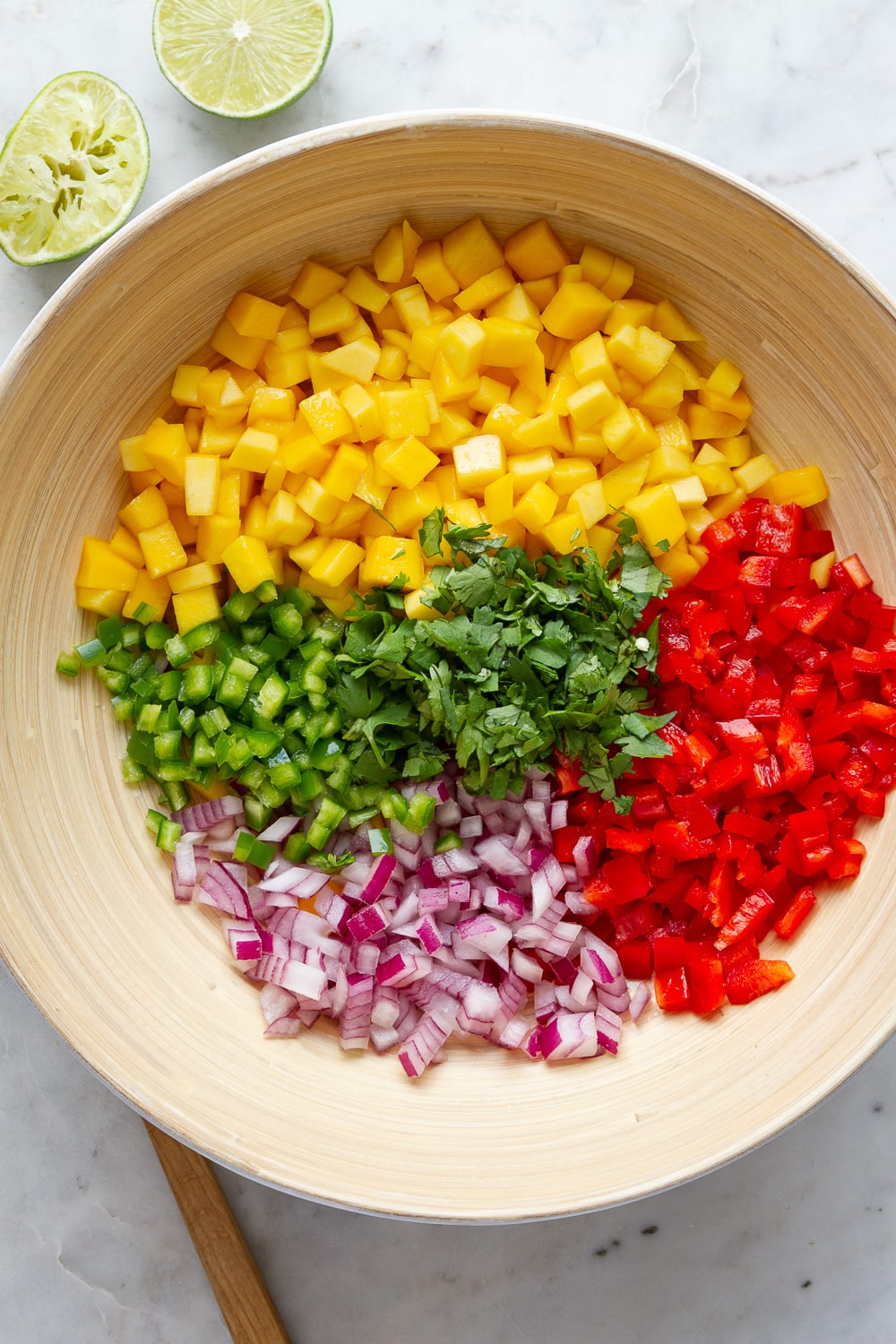 top down view of ingredients for mango salsa in a large mixing bowl just before being combined.