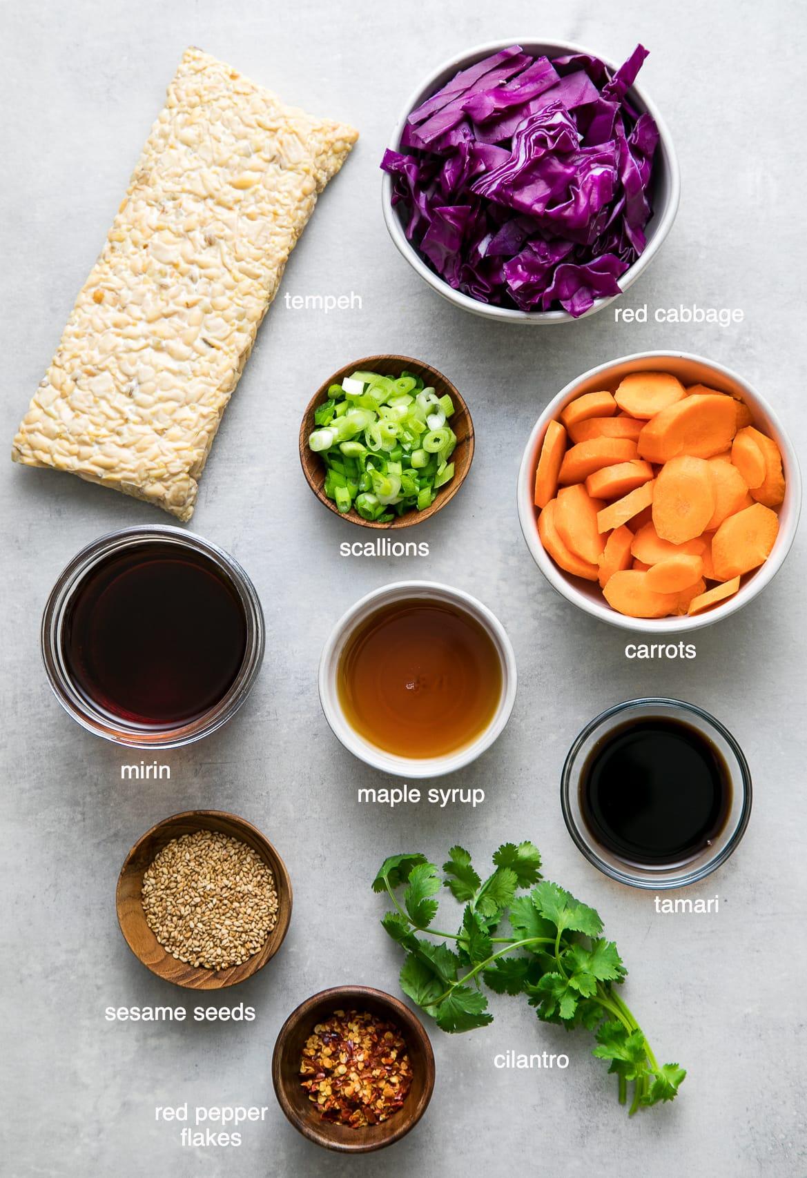 top down view of ingredients used to make maple mirin tempeh stir fry recipe.