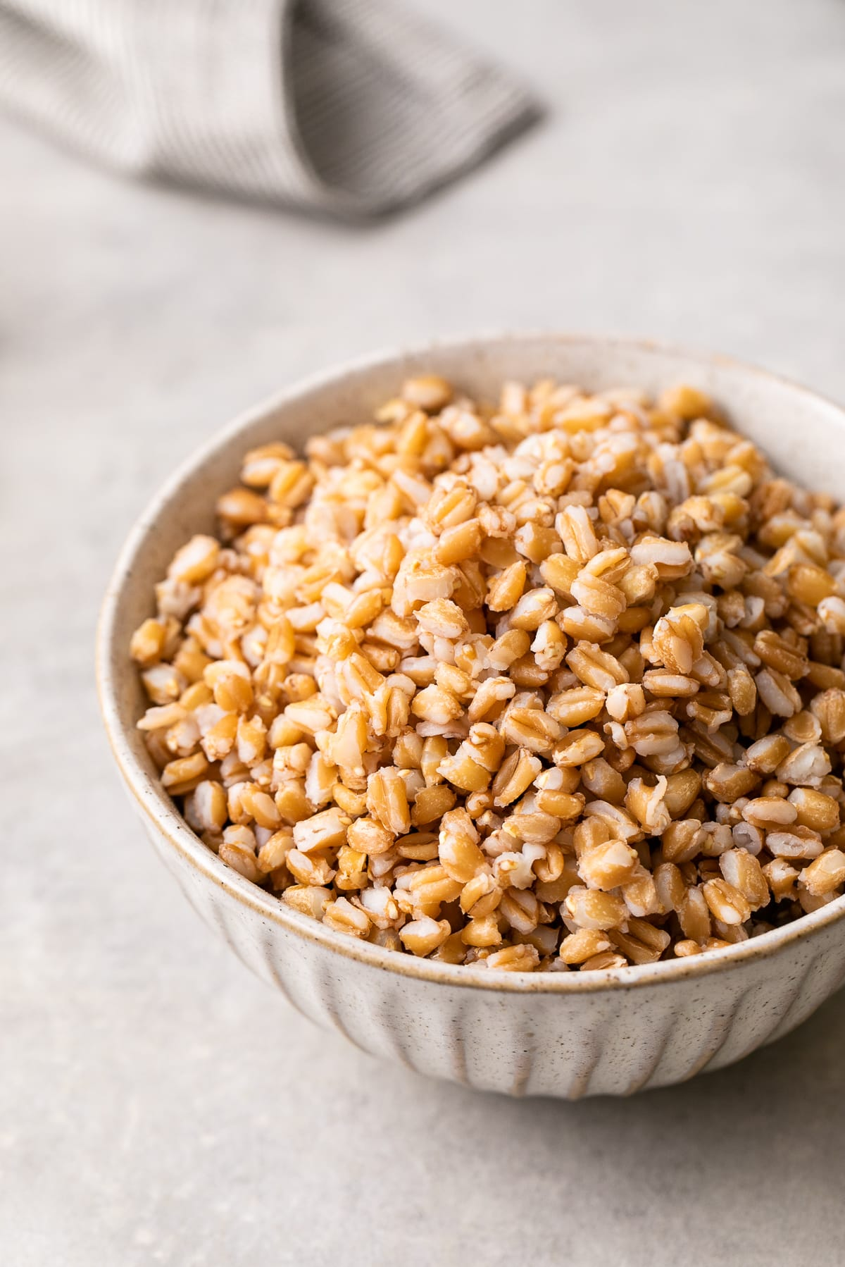side angle view of a bowl filled with cooked farro.